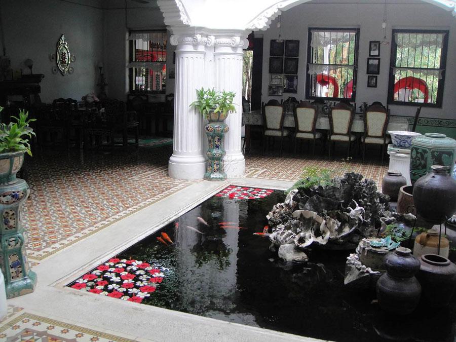 bể cá thiên nhiên trong nhà